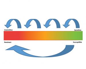 Illustration of multistep fungicide resistance vs disuptive fungicide resistance.