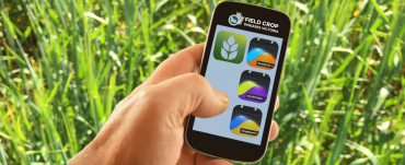 Smartphone with crop disease apps