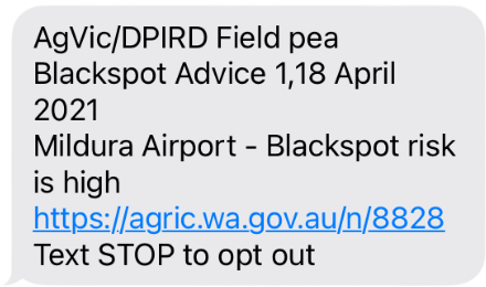 Blackspot manager text message for the Mildura airport 18 April 2021