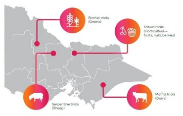Map showing regions where Internet of Things trials will take place in Victoria