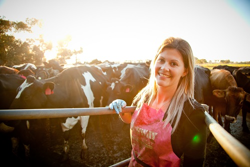 Rural woman in pink apron in front of dairy herd