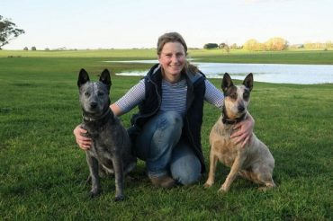 Young farmer, Dr Sarah McLean sits between her two dogs in a paddock