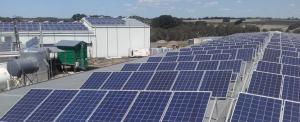 Solar panels at Meredith Dairy