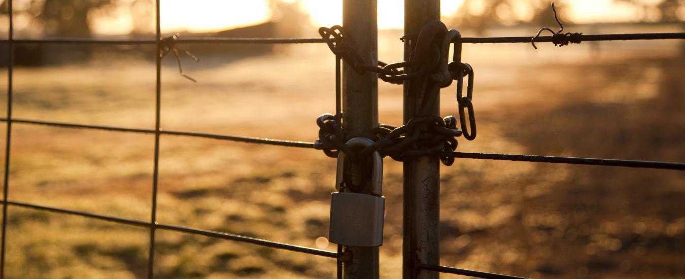Chain & padlock on a gate