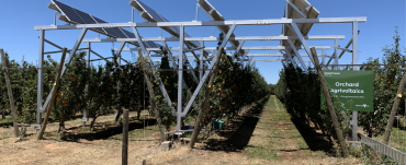 Image showing elevated solar panels over Tatura orchards