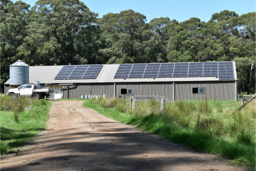 Image of solar panels on woolshed at Pecora NSW