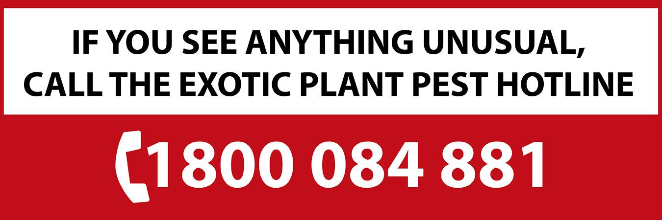Exotic pest hotline