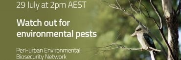 Watch out for environmental pests promo tile