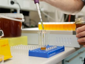 Laboratory testing of honey