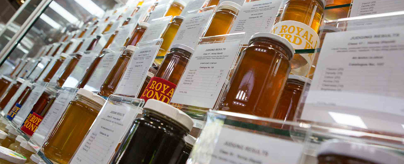 honey judging