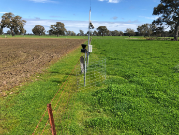 Weather station and telemetry unit of the Harrow soil moisture monitoring site located on the fence line between two paddocks.