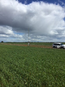 Weather station and telemetry unit of the Bangerang soil moisture monitoring site located on the fence line between the paddocks and road.