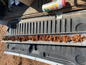 Soil core from the Bangerang paddock, which highlights a gradual change in soil characteristics down the profile.