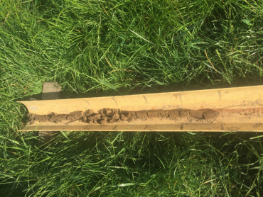 Soil core from the Longwarry paddock, which highlights a gradual change in soil characteristics down the profile.