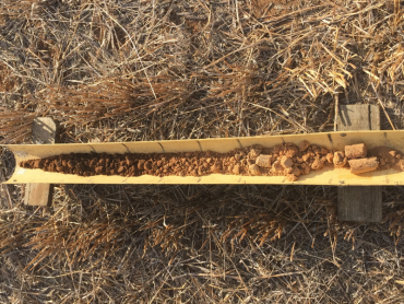 Soil core from the Ouyen paddock, which highlights a gradual change in soil characteristics down the profile.