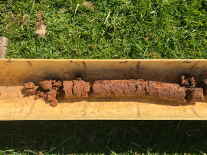 Soil core from the Baynton basalt soil site, which highlights the rich red soil of the paddock.