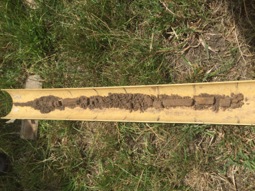 Soil core from the Yarram paddock, which highlights a gradual change in soil characteristic down the profile.