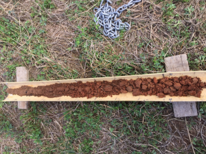 Soil core from the Dartmoor site, which highlights a gradual change in soil characteristics down the profile.