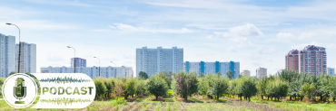garden with city landscape in background