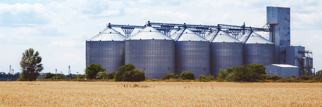 on-farm grain storage