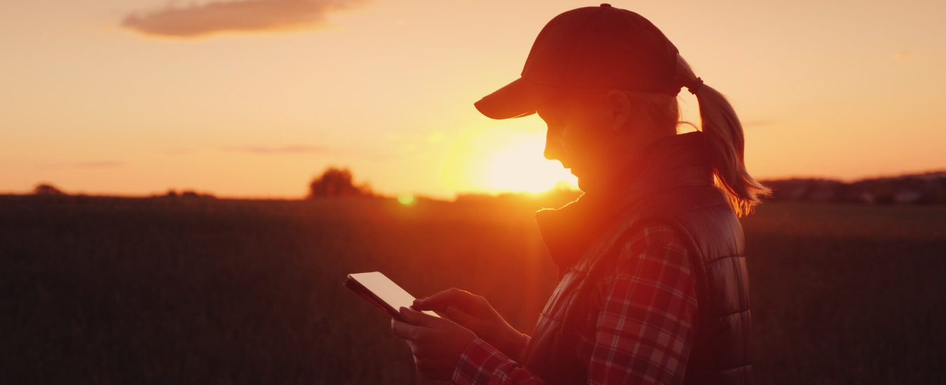 Woman reading phone with sunset landscape in the background