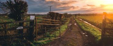 Farm gate opening onto driveway