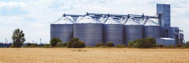 on-farm grain storage