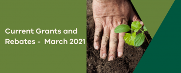 Current grants and rebates - March 2021