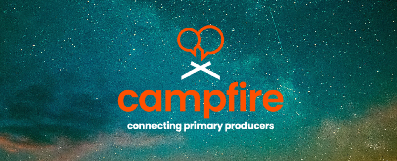 campfire logo on background of night sky