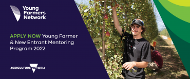 image of young male farmer in apple orchard